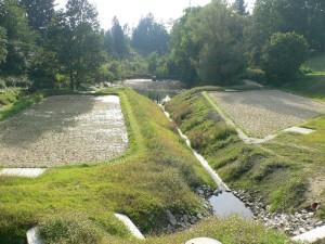 kořenová čistírna odpadních vod zapadne do rázu krajiny