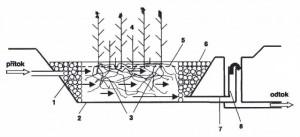 princip kořenové čistírny