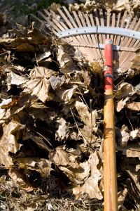 Hrabání listí je na podzim téměř samozřejmostí /