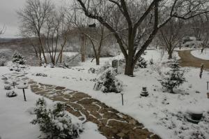 winter-garden-in-winter
